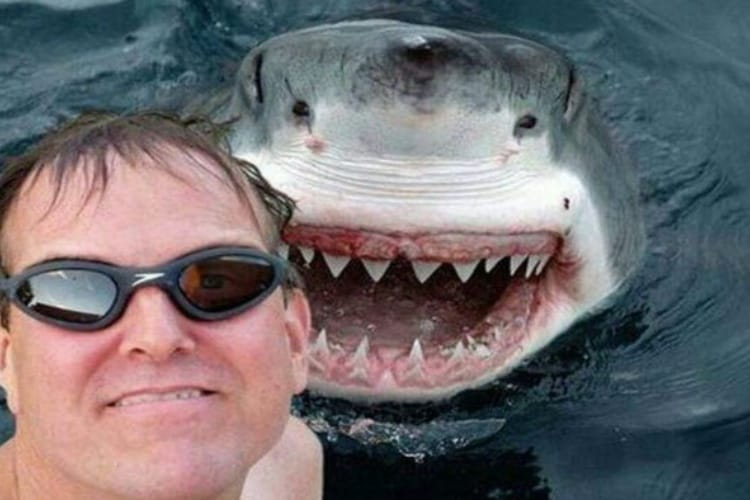 Les selfies font des morts
